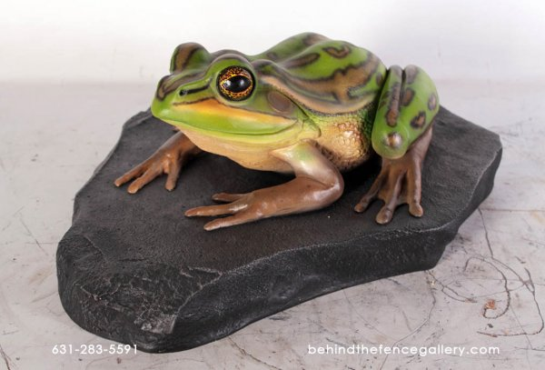 Green and Golden Bell Frog on Rock Statue