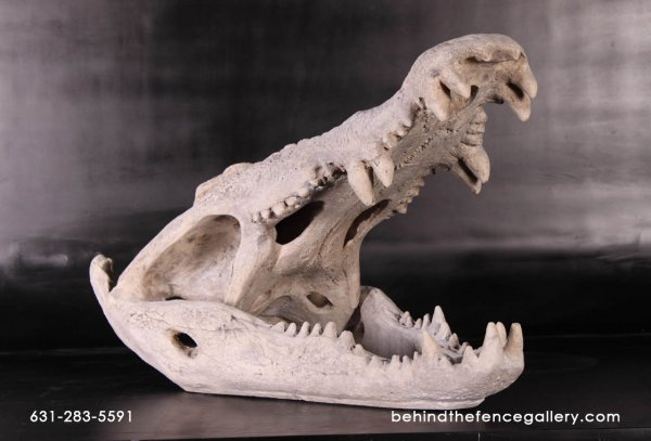 Crocodile Skull Sculpture