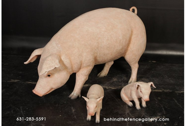 Adorable Pig Family