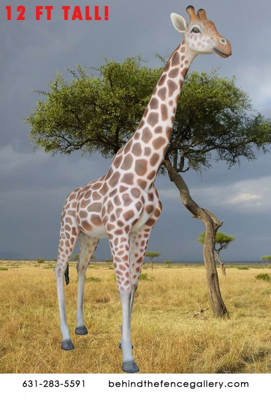 Smooth 12 ft. Tall Giraffe Statue
