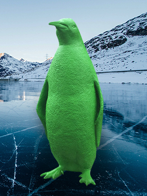 Custom King Penguin